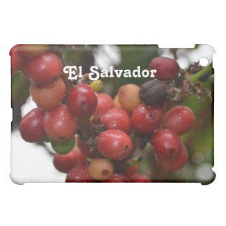 Granos de café de El Salvador