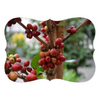 """Granos de café de Papúa Nueva Guinea Invitación 5"""" X 7"""""""