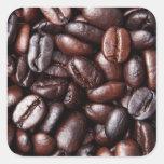 Granos de café - luz entera y oscuridad asadas pegatina cuadrada