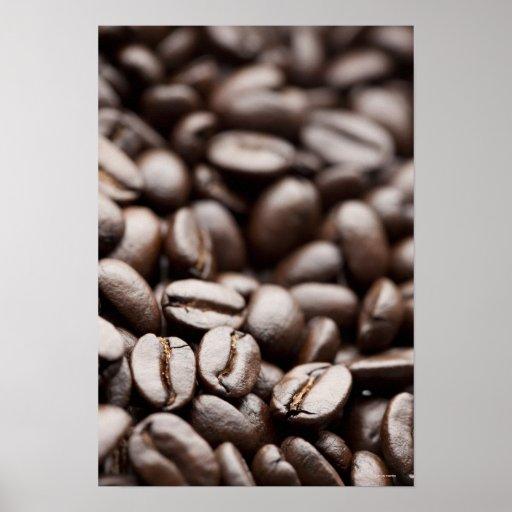 Granos de café orgánicos de la montaña púrpura de  posters