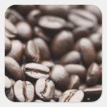 Granos de café orgánicos de la montaña púrpura de pegatina cuadrada