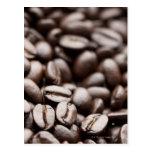 Granos de café orgánicos de la montaña púrpura de postal
