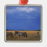 Grant Zebra 2 Ornaments
