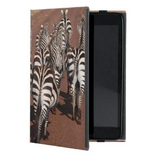Grant Zebra 4 iPad Mini Cases