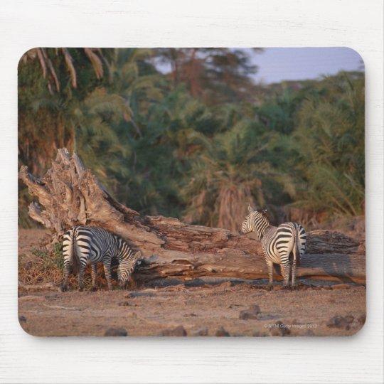 Grant Zebra 5 Mouse Pad