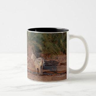 Grant Zebra 5 Two-Tone Coffee Mug