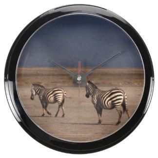 Grant Zebra Aqua Clock