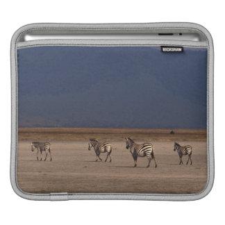 Grant Zebra iPad Sleeves