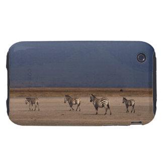 Grant Zebra iPhone 3 Tough Cases