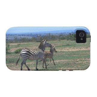 Grant Zebra iPhone 4/4S Cover