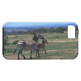 Grant Zebra iPhone 5 Case