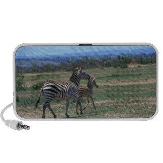 Grant Zebra iPod Speakers