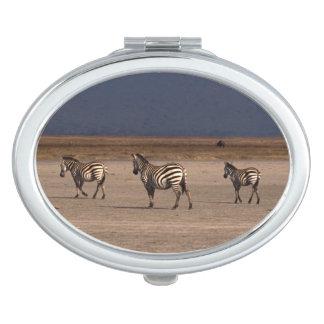 Grant Zebra Mirrors For Makeup