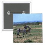 Grant Zebra Pinback Button