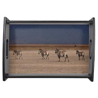 Grant Zebra Service Trays