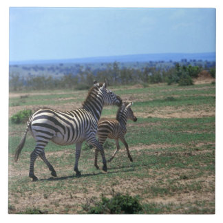 Grant Zebra Tiles