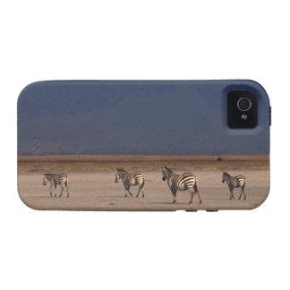 Grant Zebra Vibe iPhone 4 Cover