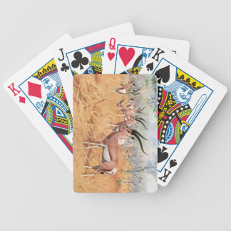 Grants Gazelle - F.W. Kuhnert Playing Cards