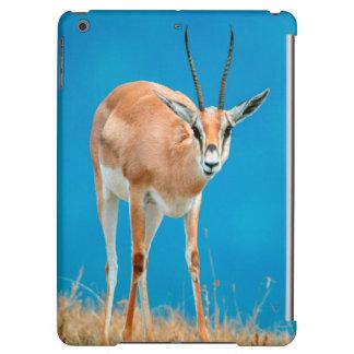 Grant's Gazelle (Gazella Granti) Ewe Portrait Cover For iPad Air