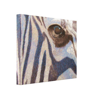 Grant's Zebra Stretched Canvas Print