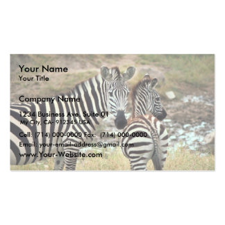 Grant's Zebra Double-Sided Standard Business Cards (Pack Of 100)