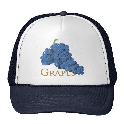grape12 trucker hat