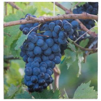 grape and vineyard cloth napkin