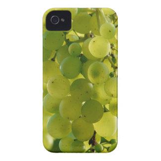 Grape case Case-Mate iPhone 4 case