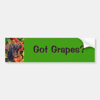 Grape Cluster Bumper Sticker (Got Grapes?) Car Bumper Sticker