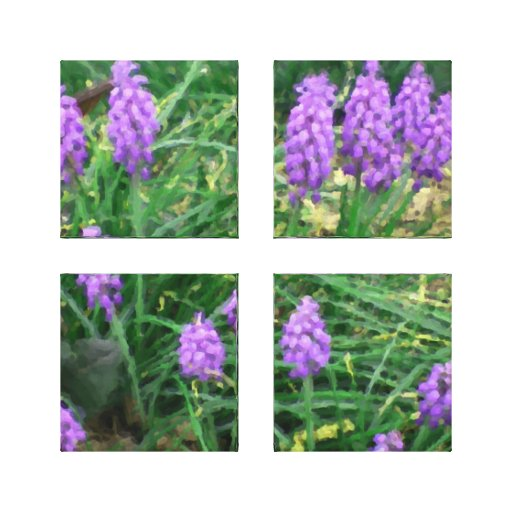 Grape Hyacinth Acrylic Four-Panel Wrapped Canvas Stretched Canvas Print