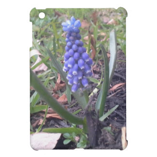 Grape Hyacinth Blossom Photography Cover For The iPad Mini