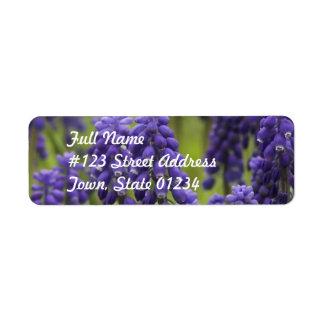 Grape Hyacinth Bulbs Mailing Label Return Address Label