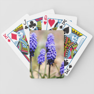 Grape Hyacinth Playing Cards