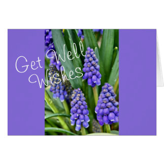 Grape Hyacinths - customize for any occasion Greeting Card