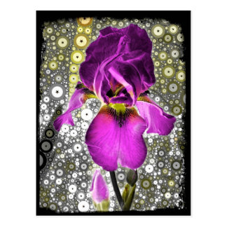 Grape Iris Postcard