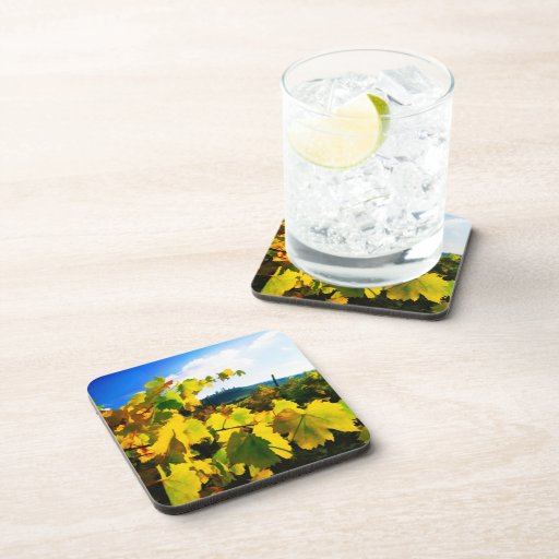Grape Leaves and the Sky Beverage Coaster