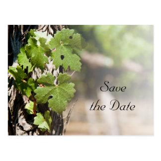 Grape Leaves Vineyard Wedding Save the Date Postcard