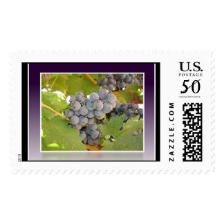 Grape Postage Stamps