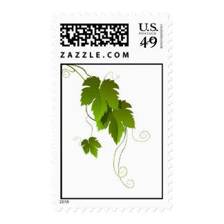 Grape vine and leaves postage stamp