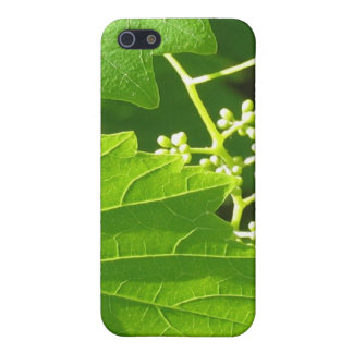 Grape Vine Covers For iPhone 5