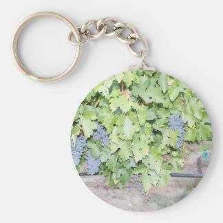 Grape vine nature and wine lover photograph keychain