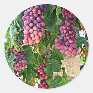 Grape Vine Round Stickers