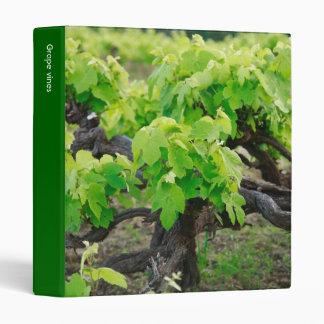 Grape vines 3 ring binder