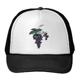 Grape Vines Hat