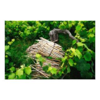 Grape vines stationery
