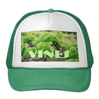Grape vines trucker hat