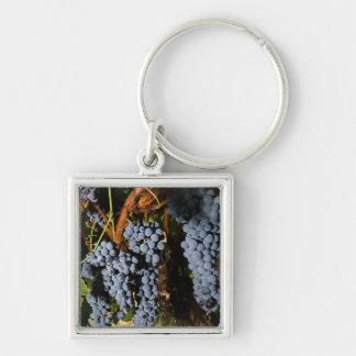 Grape Vineyard 2 Silver-Colored Square Keychain