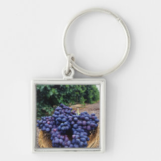Grape Vineyard Keychain