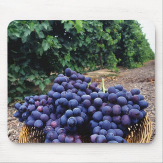 Grape Vineyard Mouse Pad