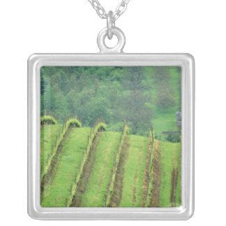 Grape Vineyards near Newberg Oregon Silver Plated Necklace